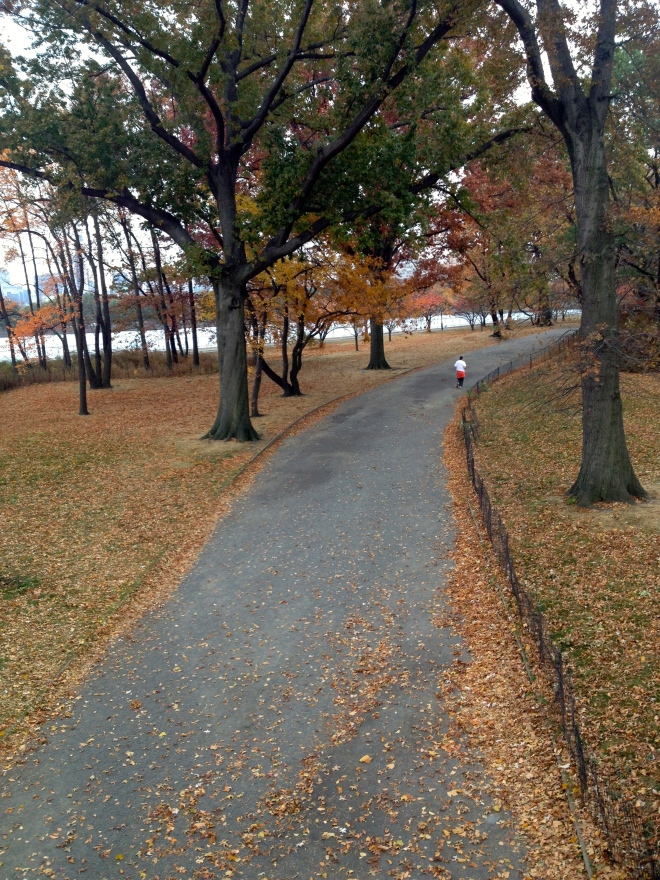 A tree-lined path in a park on a beautiful fall day with the jogger running.